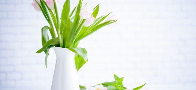 Luftfräschare för underbara dofter i hela hemmet